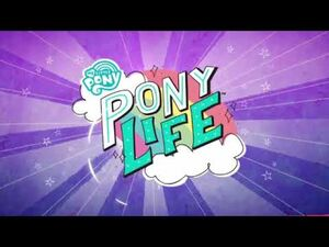 MLP_Pony_Life._We_shine_brighter_together_(French)