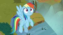 Rainbow looks at her Sombrafied teammates S9E2