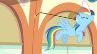 Rainbow pulling bell S4E05