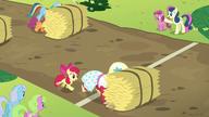 S05E17 Orchard Blossom pcha stóg siana