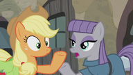 S05E20 Applejack i Maud Pie