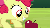 Apple Bloom looks at an apple in the patterns S9E10