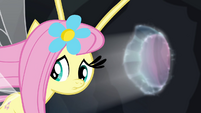 Fluttershy looking behind one last time S4E16