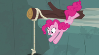 Pinkie Pie dives toward the tire swing S7E5