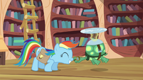 Rainbow Dash and Tank nosekiss S03E11