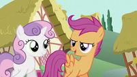 Scootaloo 'something fierce' S2E06