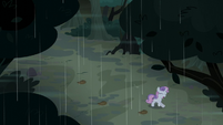 Sweetie Belle gallops after her friends S5E6
