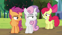 Apple Bloom smiling; Sweetie Belle and Scootaloo looks at her S5E17