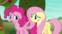 """Pinkie """"hoping you saw something I didn't"""" S6E18"""
