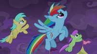 Rainbow Dash and Pegasi flying into the sky S9E17