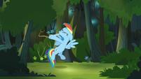 Rainbow Dash smacks herself again S4E04