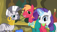 Zecora, Big Mac and Rarity looking at Fluttershy S4E14