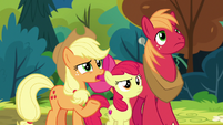 "Applejack ""the firewood salespony?"" S7E13"