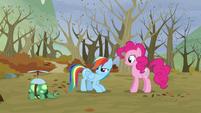 "Rainbow ""you know"" S5E5"