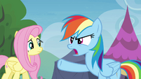 """Rainbow Dash """"I'll give it to you straight"""" S4E22"""