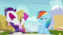 """Rarity """"nothing in common anymore!"""" S8E17"""