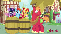 Sunset, Sci-Twi, and RD appear in apple barrels EGSB