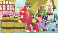 Pony Sci-Twi and RD sneak past Big Mac EGSB