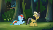 Rainbow Dash begging S4E04.png