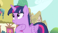 "Twilight ""have you seen anypony suspicious"" S4E23"