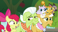 """Apple Bloom """"if he left this many tracks"""" S9E10"""