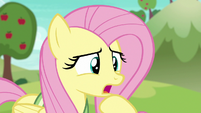 """Fluttershy """"that ball moves pretty fast"""" S6E18"""