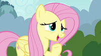 """Fluttershy suggests """"a special Breezie cheer"""" S4E16"""
