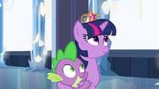 Princesa Twilight mantém Spike por perto EG.png
