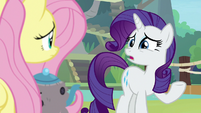 """Rarity """"that's just it, darling"""" S8E4"""