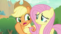 "Applejack ""quiet bunch, ain't they?"" S8E23"