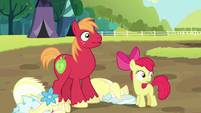 Apple Bloom and Big Mac hear registration pony S5E17