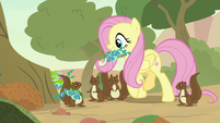 Fluttershy and squirrels gather flowers S8E23