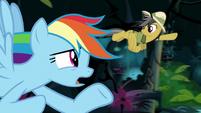 "Rainbow ""why didn't you already save it?"" S9E21"