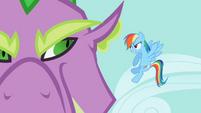 Rainbow Dash demands that Spike release Rarity S2E10