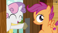 "Sweetie Belle ""You'll find something!"" S6E4"