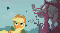 Applejack windswept hair from the first sign S2E12