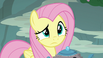 Fluttershy processing Rarity's request S8E4