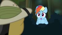 """Rainbow Dash """"a huge fan"""" S4E04"""