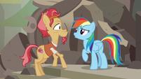 Rainbow asks who Elder Stallion is talking about S7E18