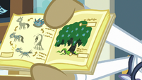 Textbook illustrations of Swamp Fever stages S7E20