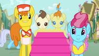 The Cake family in Ponyville S4E12