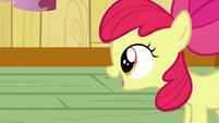 "Apple Bloom ""Are you girls thinkin' what I'm thinkin'?"" S6E4"