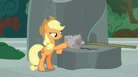 Applejack places Rockhoof's shovel on a pedestal S7E25
