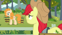 Bright Mac feeling sorry for Pear Butter S7E13