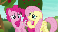 """Fluttershy """"most ponies have never even heard of"""" S6E18"""