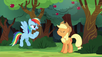 """Rainbow Dash """"I could beat the whole town"""" S6E18"""