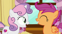 "Sweetie Belle ""Or ponies who've forgotten their special purpose!"" S6E4"