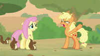 "Applejack ""we're on a friendship quest"" S8E23"