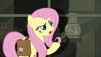 """Fluttershy """"did have a lot of artifacts"""" S9E21"""