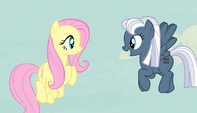 Night Glider bids welcome to Fluttershy S5E1